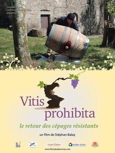 Vitis Prohibita - Film